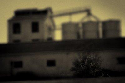 Headhouse: A Memory