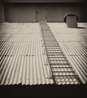 Grain Flathouse with Ladder