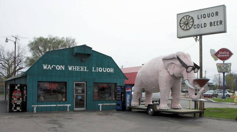 Elephant with Martini, Fortville, Indiana
