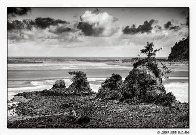 Oregon Coast B&W Image Gallery