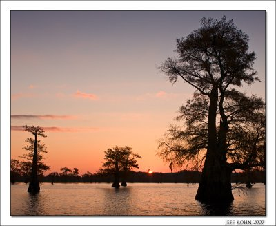 Caddo Lake Image Gallery