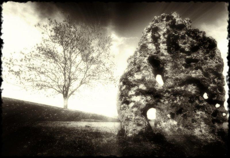 Stone, Minchinhampton, Glos (7)