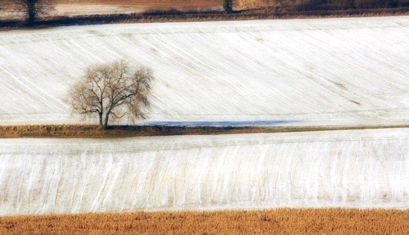 Snow textures, Painswick, Gloucs.