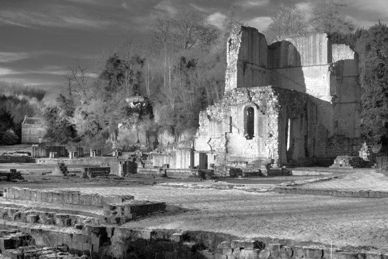 Roche Abbey(3), Notts.