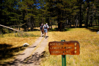 Lembert_Dome_Trail.jpg