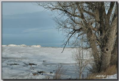 The frozen tundra beginning to melt ... a little!!