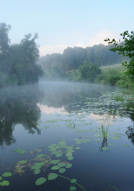 Moscow region. Osetr river