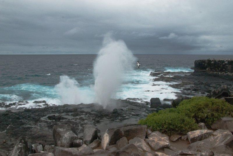 Blow-Hole on Shore of Espanola Island