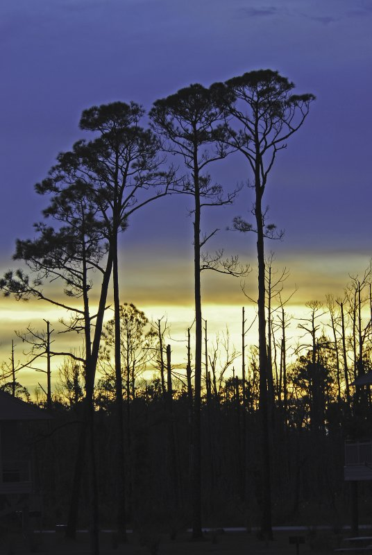 Sunsetting at GulfShores, AL