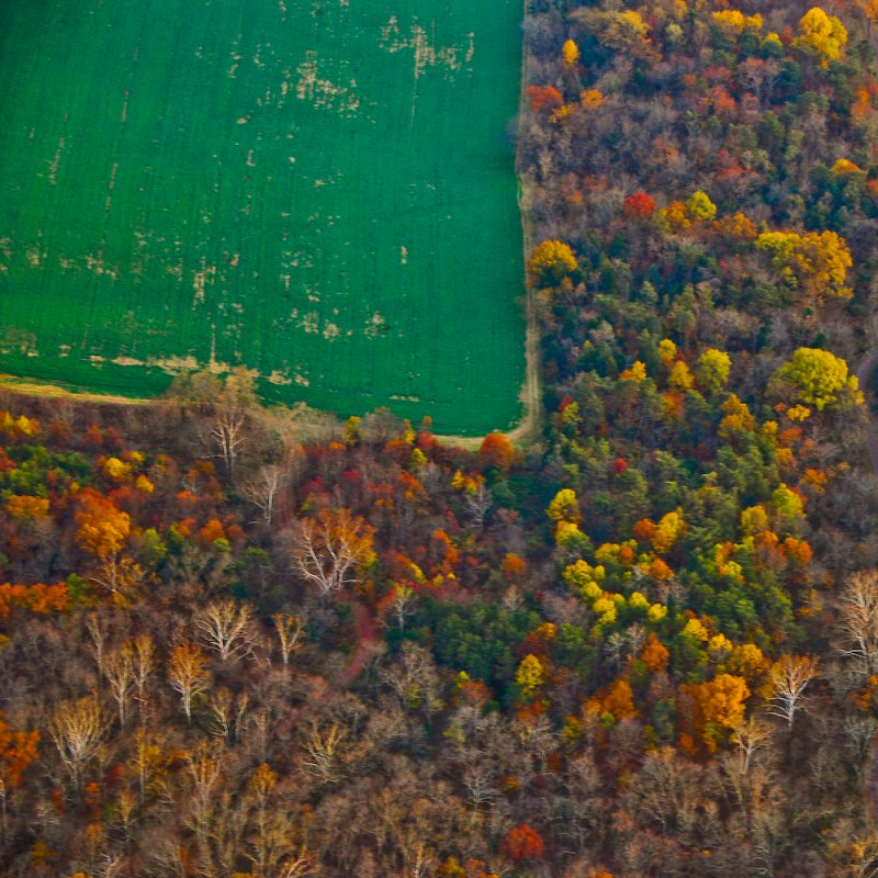 Green Field in Shenandoah Valley
