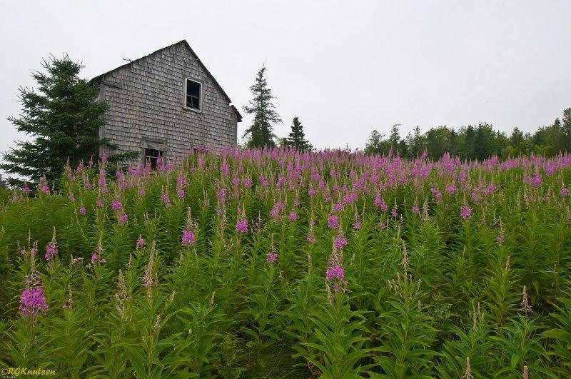 Trescott Maine - Route 191