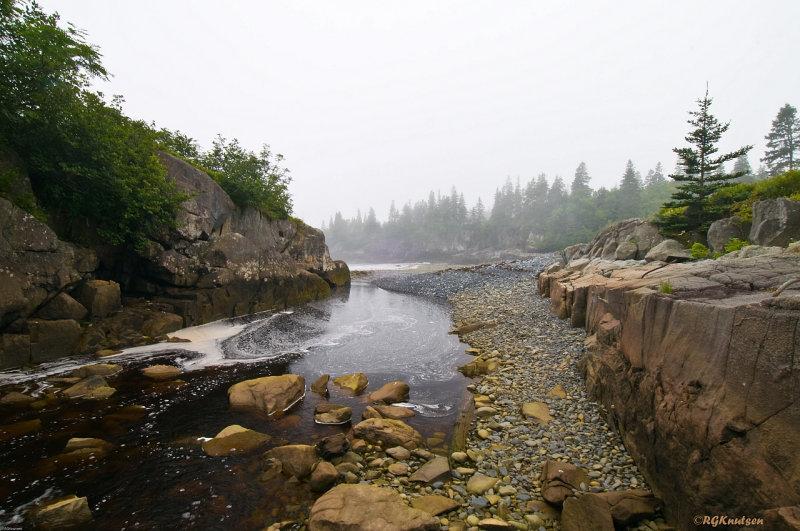Hamilton Cove Preserve - Downstream