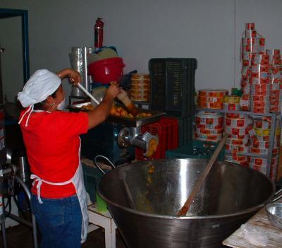 Cosecha Purhépecha-Moliendo chiles