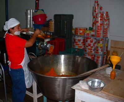 Cosecha Purhépecha- Moliendo chiles 2