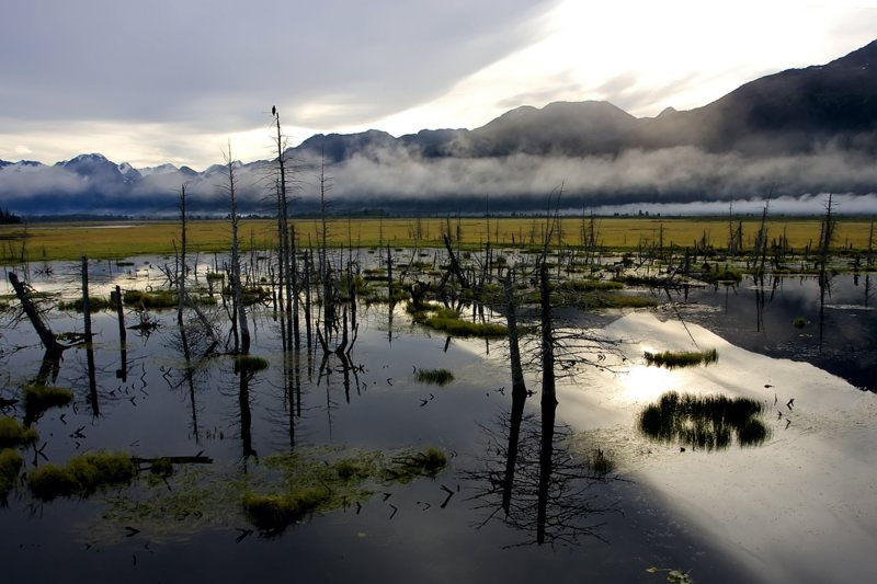Alaska661.jpg