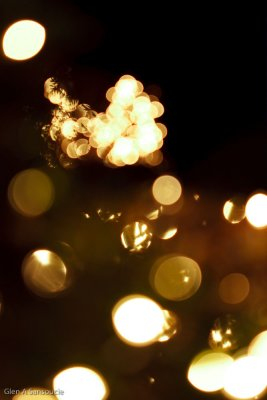 Day 349 - Xmas Lights