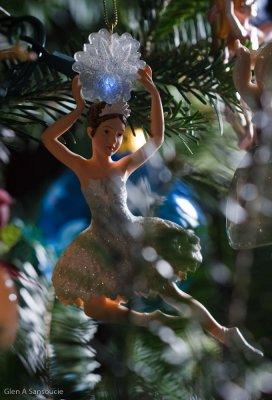 Day 354 - Tree Dancing