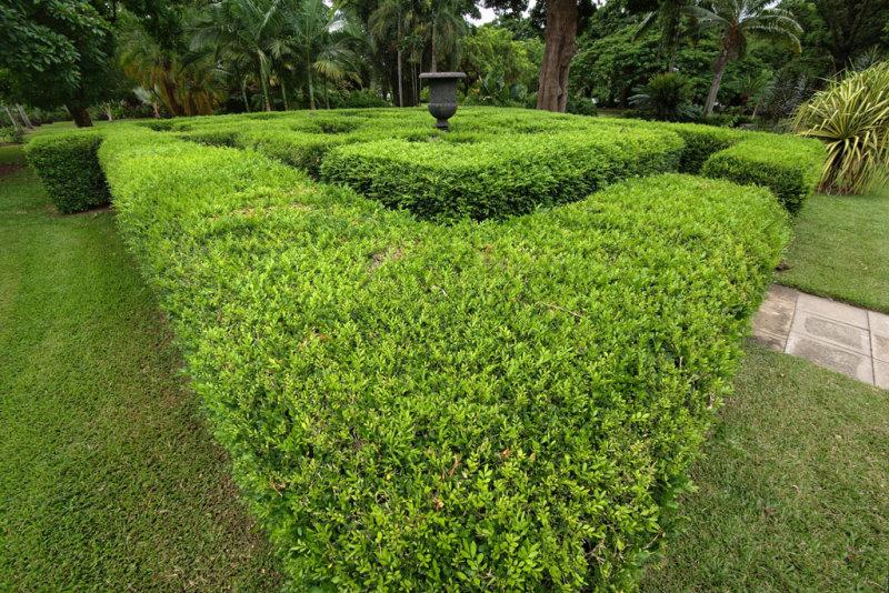 Maze </p>(P1000918)