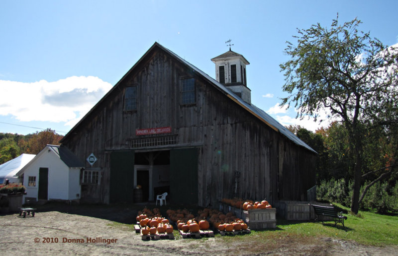 New Hampshire Barn with Pumpkins