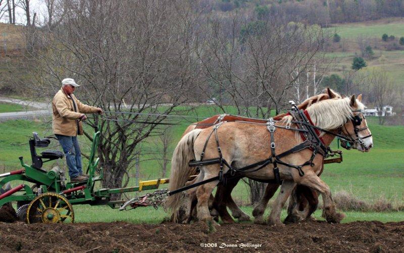 Plowing in Strafford