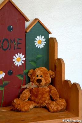 Angie's bear #2