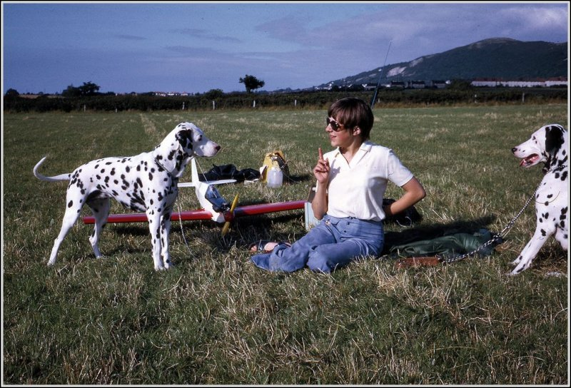 Slope soaring and uncontrolled dogs!! - Page 2 122809738