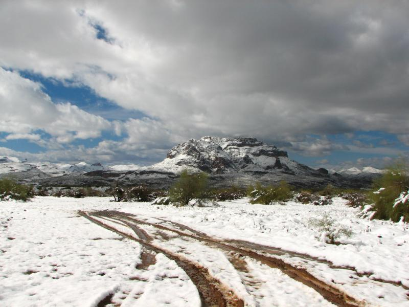 View of Picketpost Mtn From Silver King Mine Road
