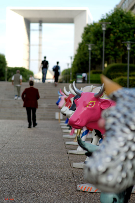 Paris Cow parade (DOF)