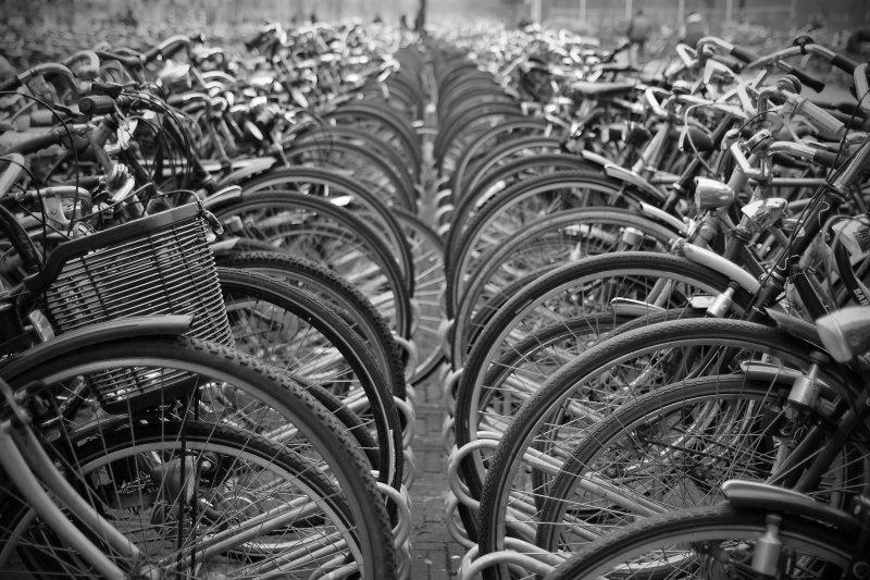 Spring in den Haag 2008-04-03 4772.jpg