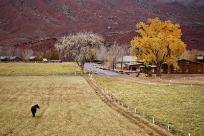 Ranch, Moab, Utah, 2009