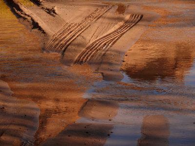 Tracks, Canyon de Chelly National Park, Arizona, 2007