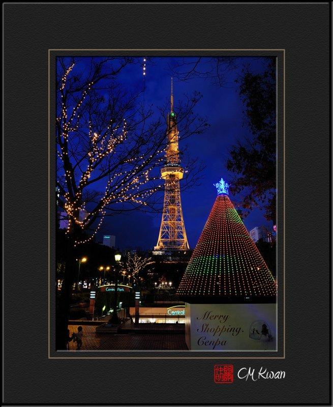 Xmas Light in Japan