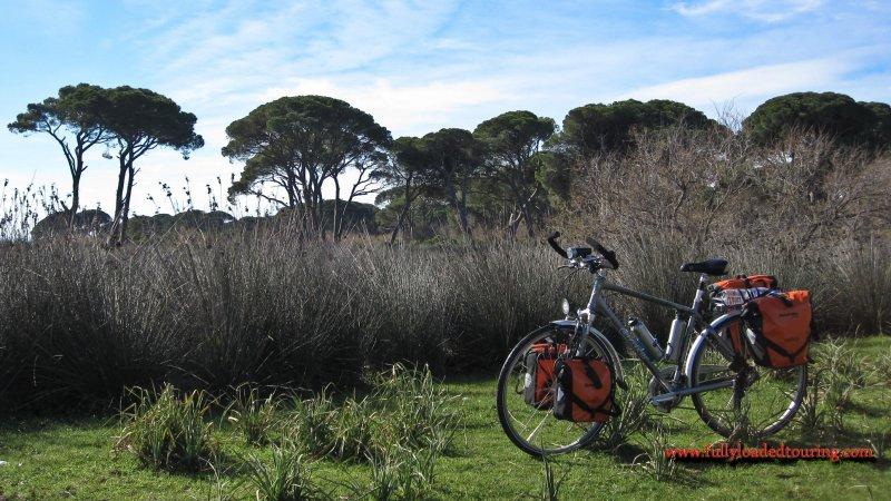 338    Spiros - Touring Greece - Giant X touring bike