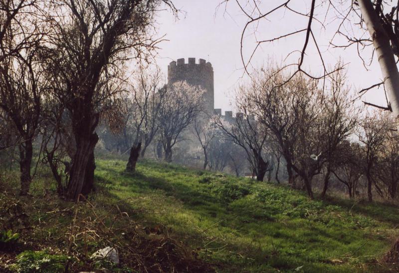 Ohrid castle