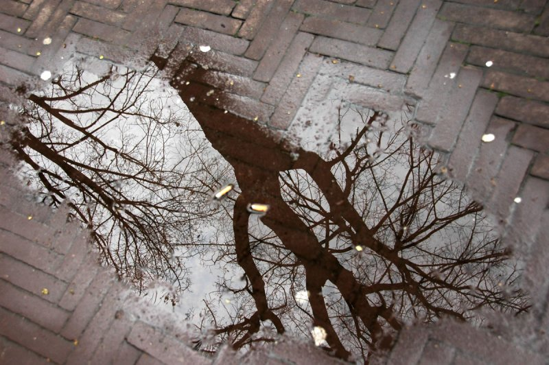 reflections on a puddle of water on the pavement