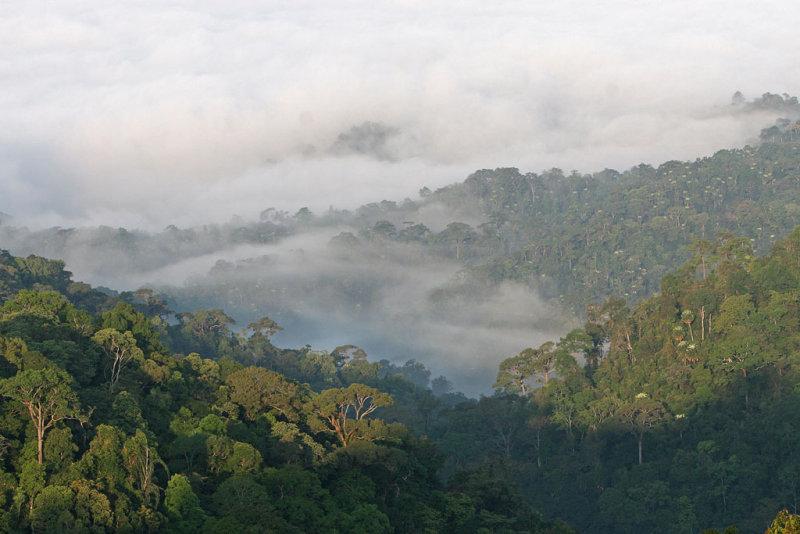 Panernthung, Kaengkrachan National Park