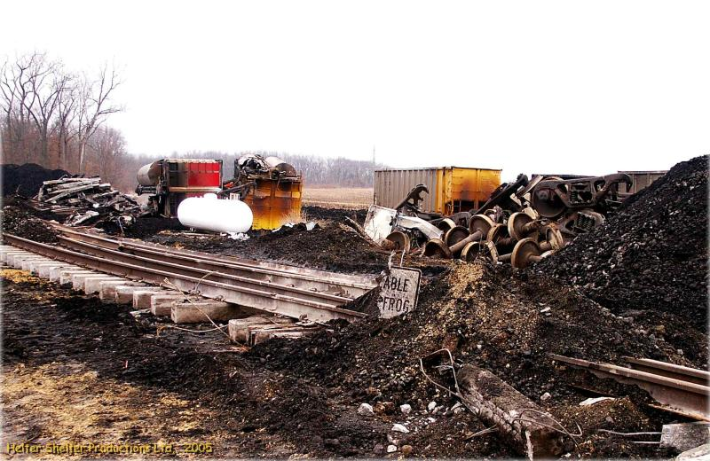 (Move)able Frog at Derailment Site