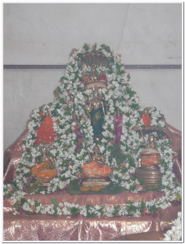 11-ThiruvArAdhana perumAls.JPG