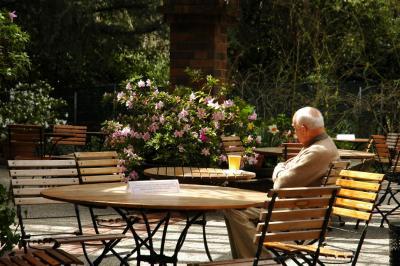 April 2- In Contemplation of Azaleas