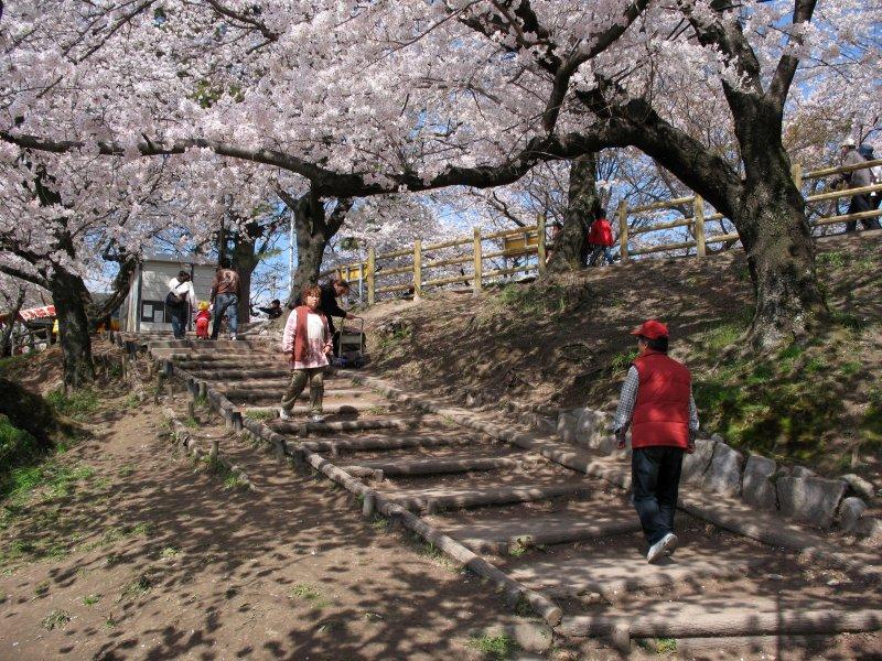 Path up to Okazaki-kōen