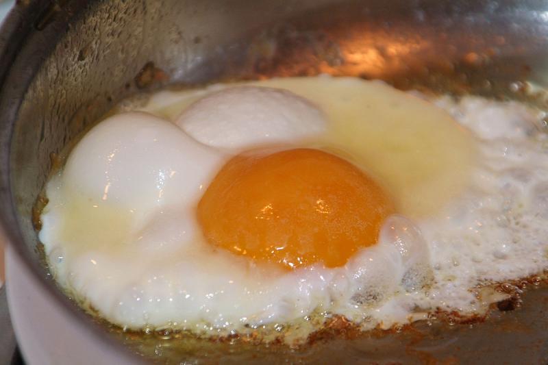 Paul and Elizabeth Frantz Farm Fresh Egg BILD284.jpg