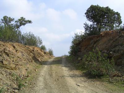 Roads in the Algarve