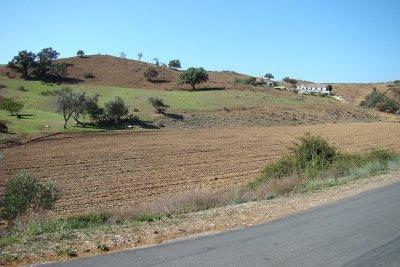 Rural Landscape, Junqueira - Castro Marim, Algarve