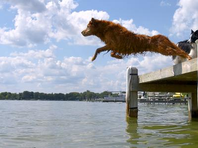 Mollie Jump