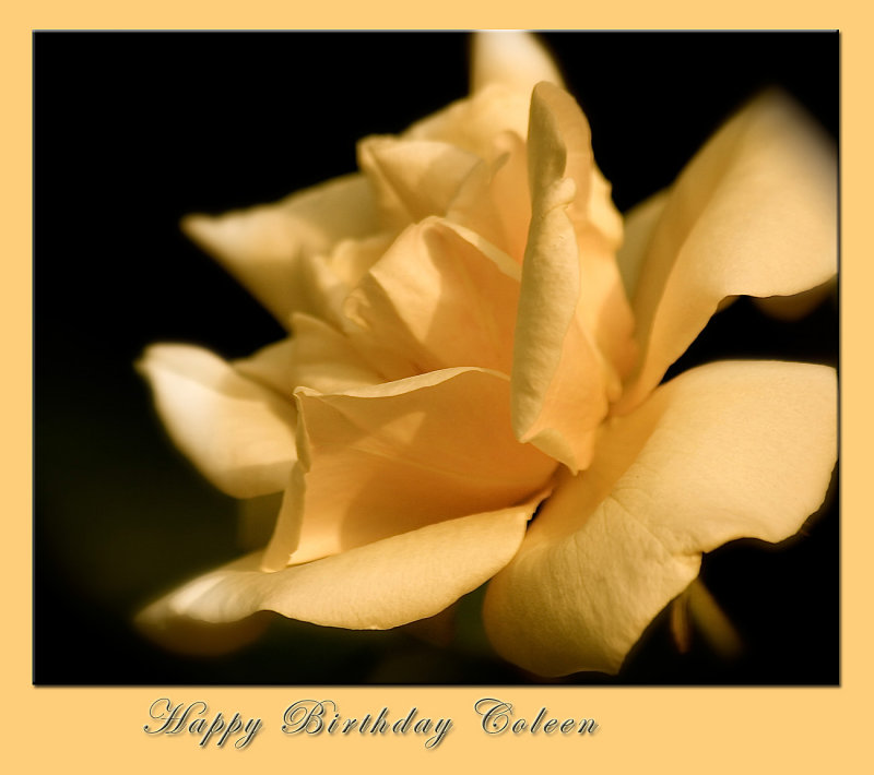 Happy Birthday Coleen