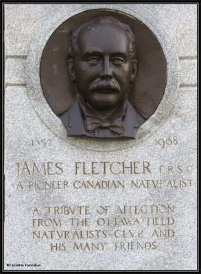 James Fletcher  1852-1908
