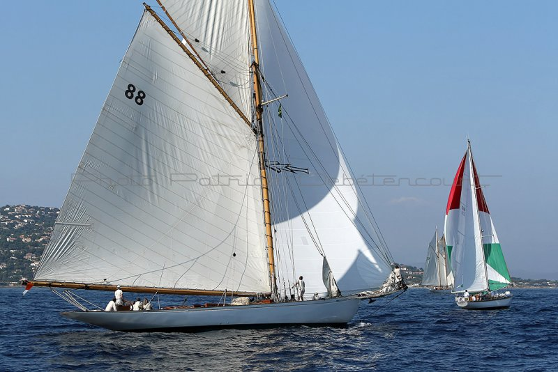 454 Voiles de Saint-Tropez 2011 - MK3_5558_DxO Pbase.jpg