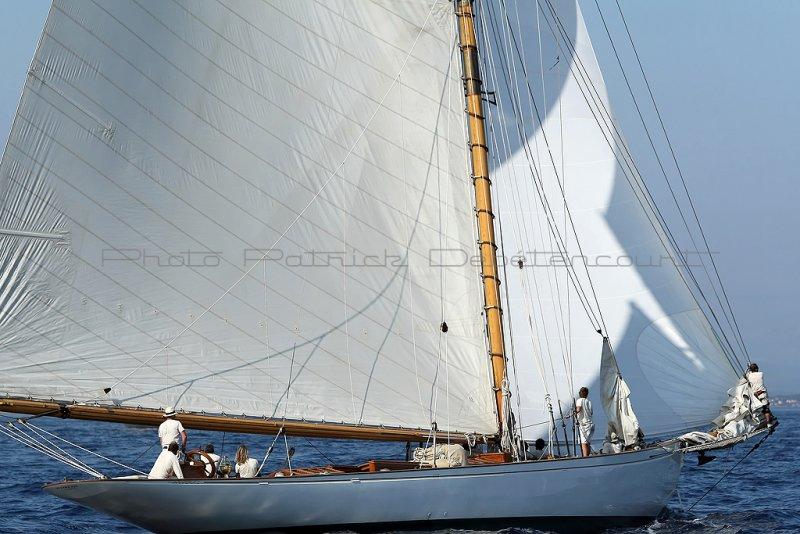 455 Voiles de Saint-Tropez 2011 - MK3_5559_DxO Pbase.jpg