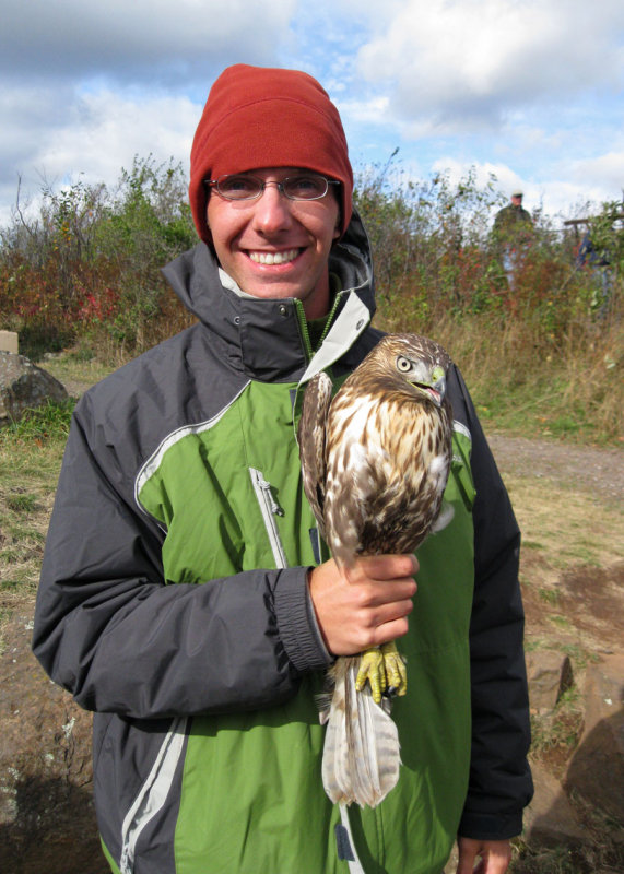 Im holding a juvenile rufous-morph Red-tailed Hawk