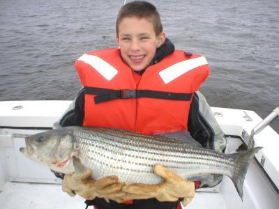 Stews Fish2.jpg